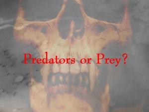 Predators_or_Prey_Amazon_Studios