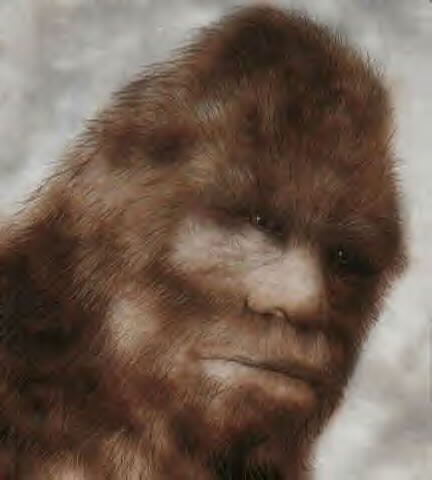 Sasquatch_Face