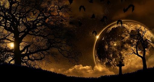 Bats_Moon