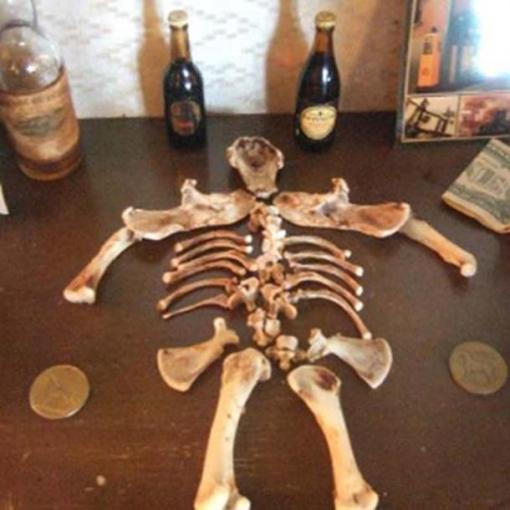 Leprechaun_Bones